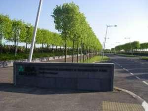 60 Business Park, Roscommon